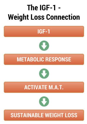 Review Metabolic Factor