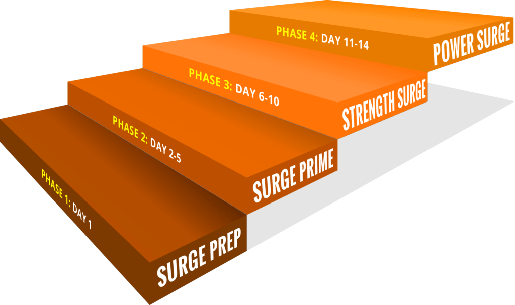 Bodyweight Surge reviews