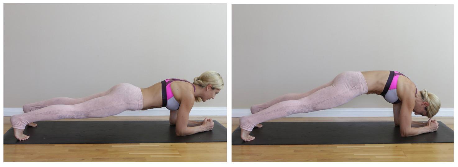 Plank Pelvic Tilts