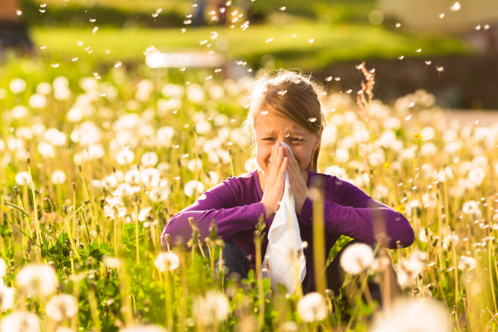 best diet for allergies