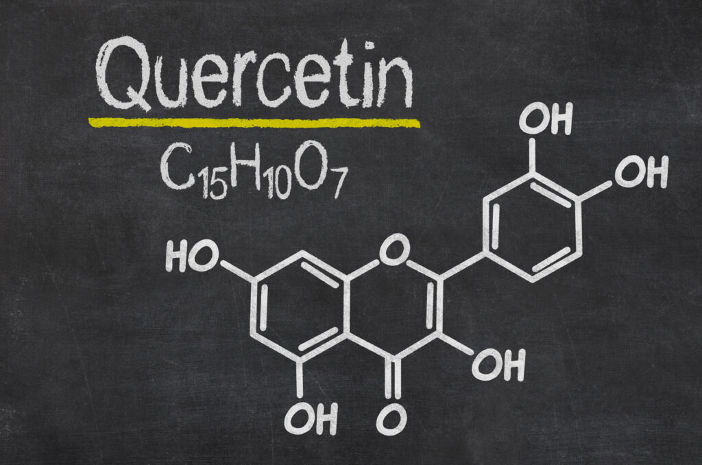 foods high in quercetin