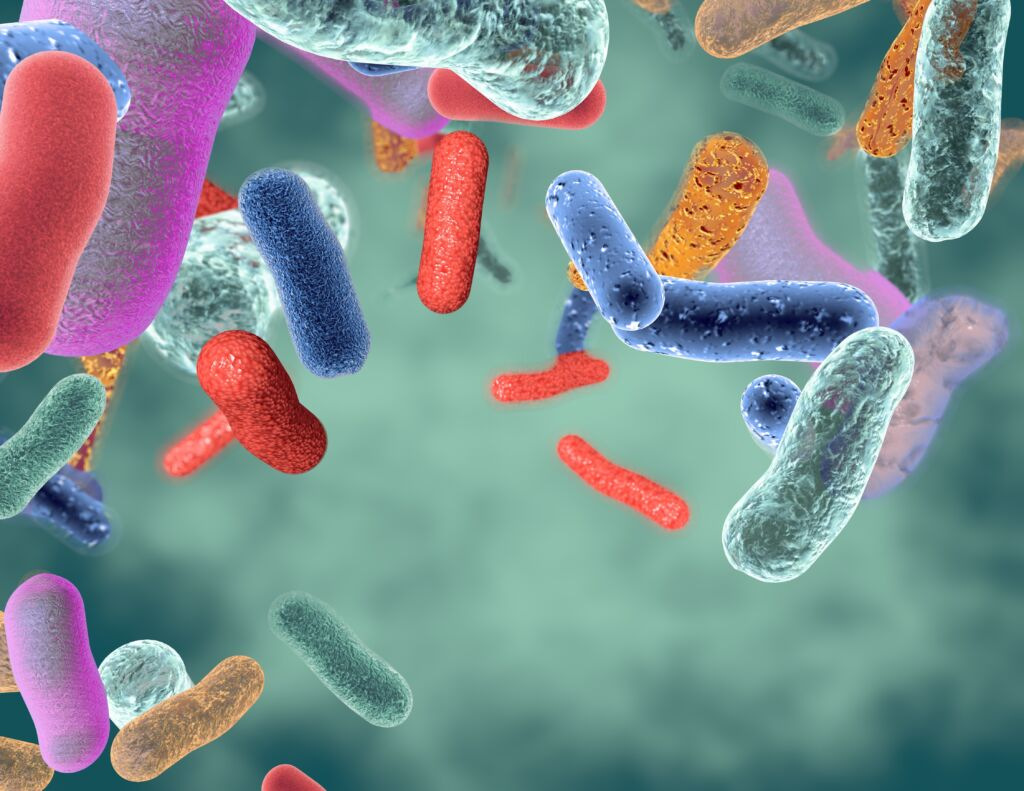 what are probiotics good for